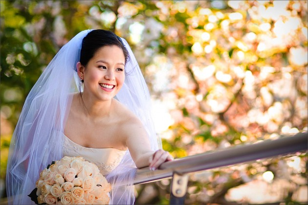 Serendipity Wedding Photography CBD locations