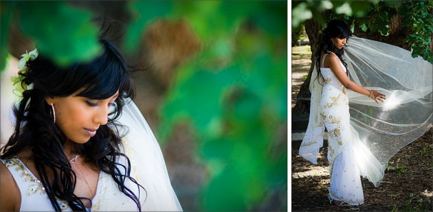 serendipity photography kamesburgh gardens