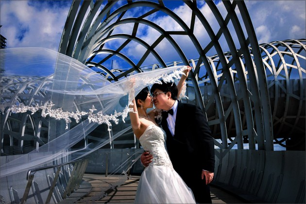maggie webb bridge architectures22222