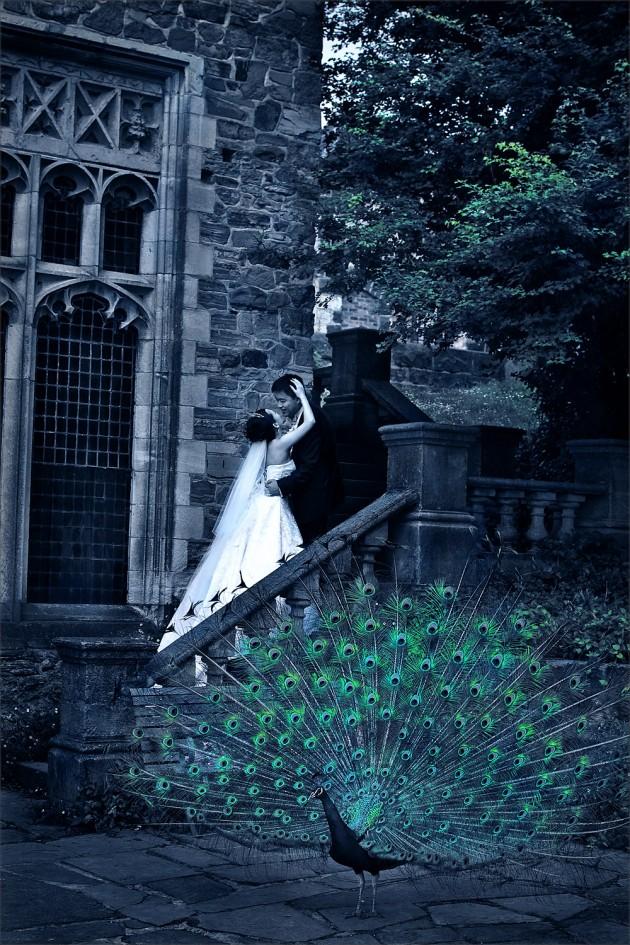 mai montsalvat peacock gothic s33