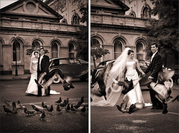 Bride and Pidgions at South Melbourne Town Hall