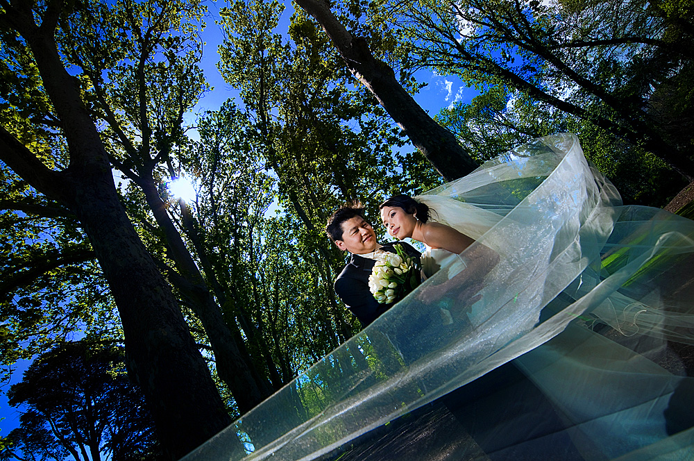 Serendipity Photography - Fitzroy Gardens - Quynh