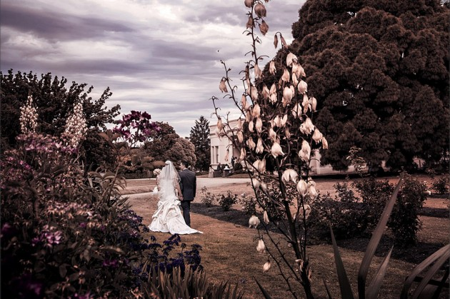 Serendipity Wedding Image - Wedding Ceremony Locations